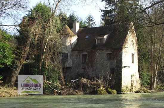 MOULIN A RENOVER Vendu à BOUSSY SAINT ANTOINE 231 900 € - Exclusivité -